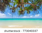 byron bay beach on a clear day... | Shutterstock . vector #773040337