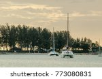 sea view at sunset with ship...   Shutterstock . vector #773080831