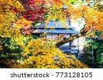 pavilion in maple | Shutterstock . vector #773128105