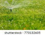 garden irrigation system... | Shutterstock . vector #773132605