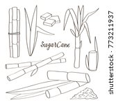 sugar cane icons | Shutterstock .eps vector #773211937