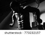 young muscular fitness... | Shutterstock . vector #773232157