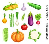 vegetable watercolor icon of... | Shutterstock .eps vector #773235271
