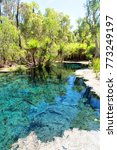 in australia mataranka  river...   Shutterstock . vector #773249197