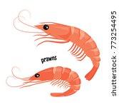 fresh prawns. vector... | Shutterstock .eps vector #773254495