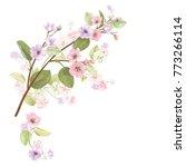 spring blossom  bloom  ... | Shutterstock .eps vector #773266114