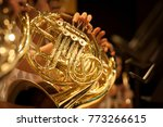 French horn intrument