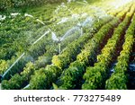 irrigation system in function | Shutterstock . vector #773275489