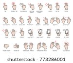 hand gestures icons set with... | Shutterstock .eps vector #773286001