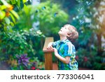 little blond preschool kid boy... | Shutterstock . vector #773306041
