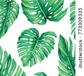 monstera leaves watercolor... | Shutterstock . vector #773309335