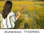 woman holds the dried flowers... | Shutterstock . vector #773339341