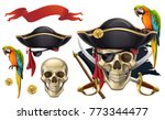 Skull And Parrot. Pirate Emble...