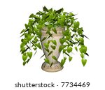 illustration of a philodendron  ... | Shutterstock . vector #7734469