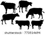 cow farm silhouette set   Shutterstock .eps vector #773514694