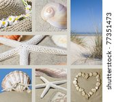 collage with motives of summer... | Shutterstock . vector #77351473