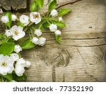 Wood Background With Spring...