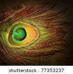 peacock feather | Shutterstock . vector #77353237