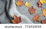 autumn accessories knitted... | Shutterstock . vector #773533939