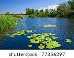 quiet summer river | Shutterstock . vector #77356297