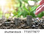 plant coins saving growth up to ... | Shutterstock . vector #773577877