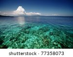 coral reef transparent sea and... | Shutterstock . vector #77358073