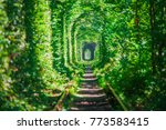 a railway in the spring forest... | Shutterstock . vector #773583415
