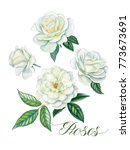 Stock photo watercolor hand painted roses can be used as romantic background for web pages wedding invitations 773673691
