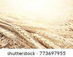 ears of wheat on wooden...   Shutterstock . vector #773697955