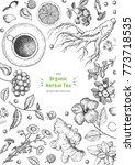 herbal tea shop frame vector... | Shutterstock .eps vector #773718535
