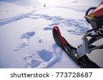 Ski Of Snowmobile And Remote...