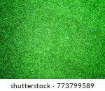 green artificial turf pattern ... | Shutterstock . vector #773799589