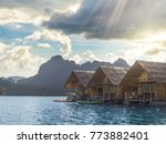 floating bungalows at khao sok...   Shutterstock . vector #773882401