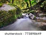 amazing water stream and... | Shutterstock . vector #773898649