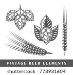 vintage beer elements. vector... | Shutterstock .eps vector #773931604