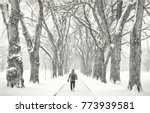 lonely male figure walking in a ... | Shutterstock . vector #773939581