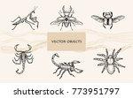 vector illustration. pen style... | Shutterstock .eps vector #773951797