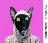 contemporary art collage. fun... | Shutterstock . vector #774008761