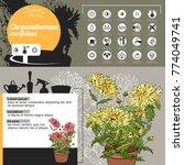template for indoor plant... | Shutterstock .eps vector #774049741