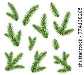 green fir tree branch  | Shutterstock . vector #774138265