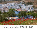 traditional moroccan courtyard... | Shutterstock . vector #774171745