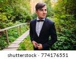 the handsome groom  standing in ... | Shutterstock . vector #774176551
