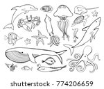 sea animals line icons hand... | Shutterstock .eps vector #774206659