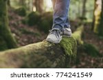 woman walking on a log in the... | Shutterstock . vector #774241549