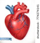 human heart. medicine  internal ... | Shutterstock .eps vector #774274141