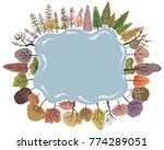forest nature frame and... | Shutterstock .eps vector #774289051
