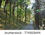 roadway in darjeeling.  | Shutterstock . vector #774303694