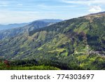 green mountain landscape in... | Shutterstock . vector #774303697