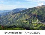 green mountain landscape in... | Shutterstock . vector #774303697