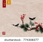 pine tree  sakura cherry tree... | Shutterstock .eps vector #774308377